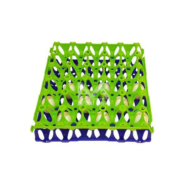 شانه حمل تخم مرغ روی هم سبز آبی