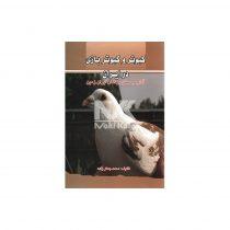 کبوتر و کبوتر بازی در ایران روی جلد