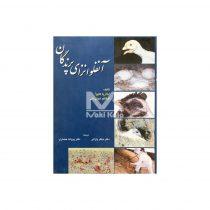 کتاب آنفلوانزای پرندگان روی جلد