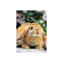 کتاب خرگوش