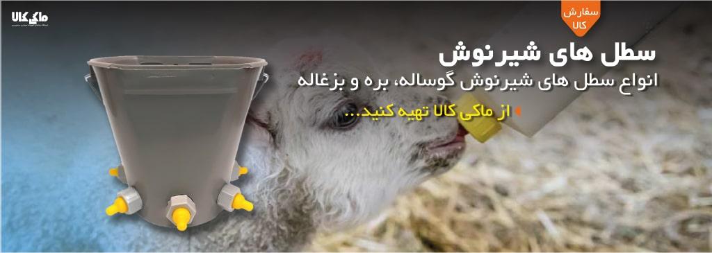 سطل شیرنوش