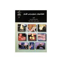 کتاب عفونت های رئو ویروسی طیور